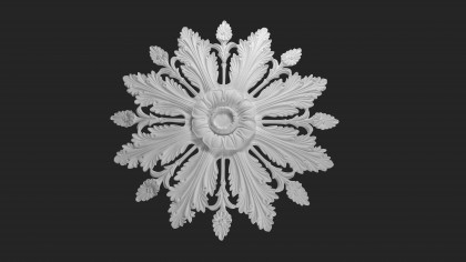 Palace ceiling rose